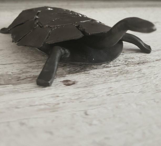 Turtle of steel