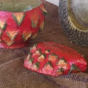 Dragon Fruit Bowls
