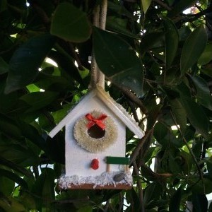 Christmas Birdhouse + free succulent cuttings