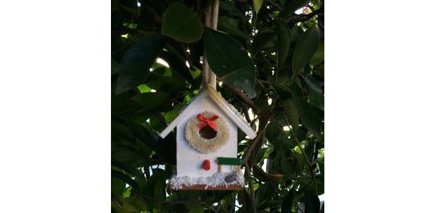 Christmas Birdhouse + free succulent cuttings