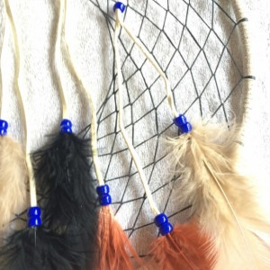 Big Beautiful Dream Catcher