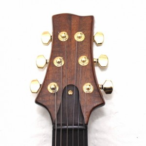 Anu Custom Electric Guitar Figured Walnut ANAN Hollow Body (Resonable offers accepted))