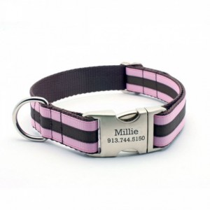 Layered Stripe Dog Collar with Laser
