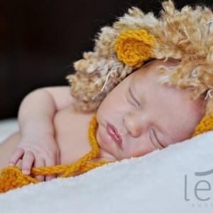 newborn baby lion hat photography prop
