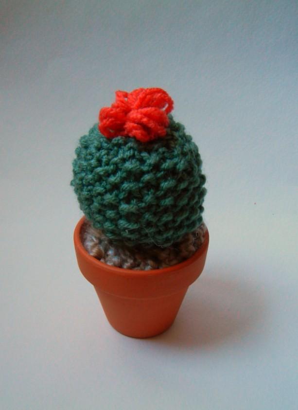 Mini Knit Cactus!