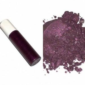 Makeup Mineral Eye Shadow Lip Gloss Combo