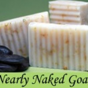 Goat's Milk Soap (mild) - Set of 2
