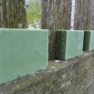 2 Northwoods Soap Bars