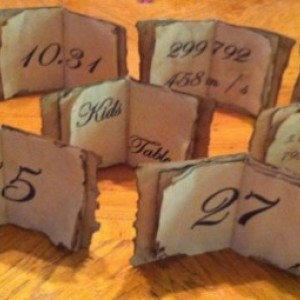 Wedding Table Numbers (Customizeable, 10)
