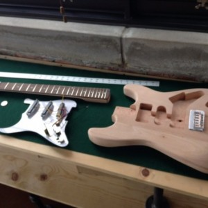"""JG Special "" - Custom Guitar by Tasty Lick Guitars"