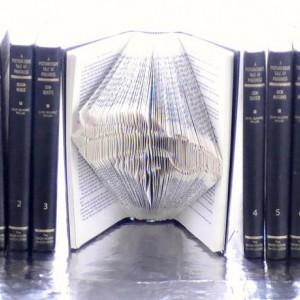 Denver Broncos NFL Book Origami