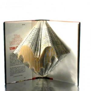 Bat Book Origami - Custom Halloween Bat Book Art