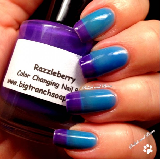 Ombre Color Changing Thermal Nail Polish Quot Razzleberry