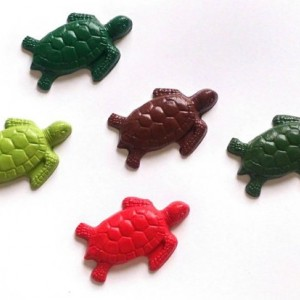 Sea turtle crayons set of 12