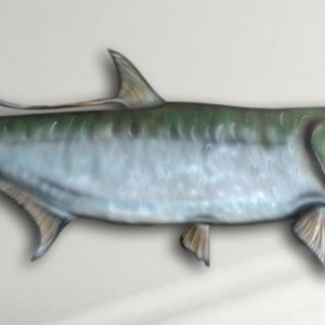 "14"" Tarpon Salt Water Game Fish Replica, Wall Mount, Decor, Nautical Art, Gift"
