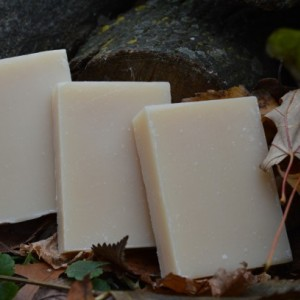 2 Tea Tree and Eucalyptus Soap Bars