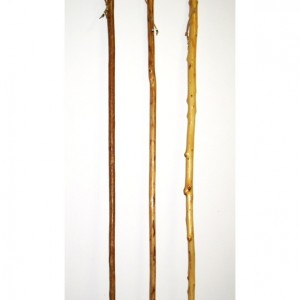 Traditional Walking Stick